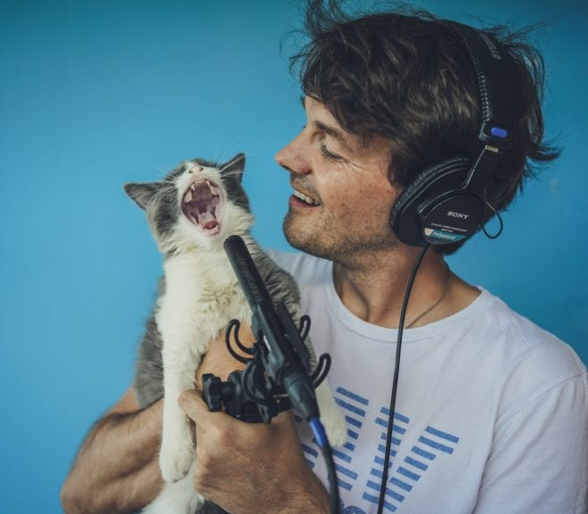 Cat on microphone